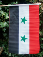 HAND WAVING FLAG - Syria